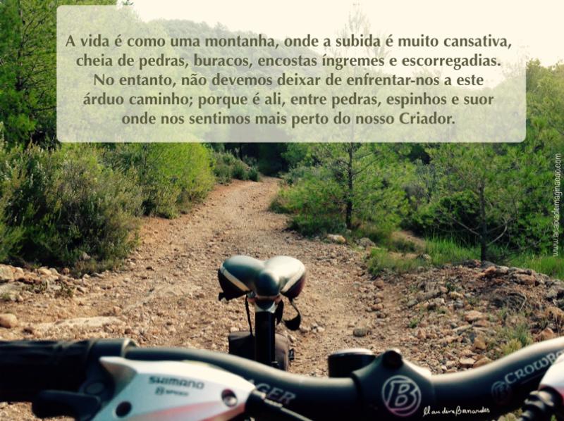 Blog: A caixa de imaginação. Entrada: A pedra e o caminho. Foto de Arquivo: Claudine Bernardes lugar: Desierto de las Palmas